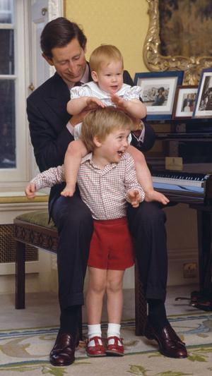 Фото №2 - Семейное гнездо: как выглядел дом, в котором росли Уильям и Гарри