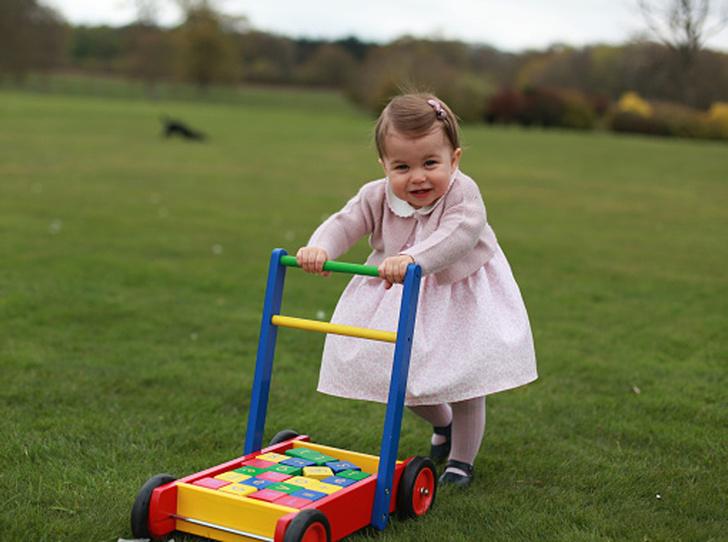 Фото №9 - «Деревянные игрушки»: во что играют дети королей