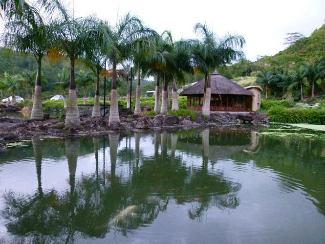 Фото №9 - Новый арт-объект Келси Монтегю на Маврикии
