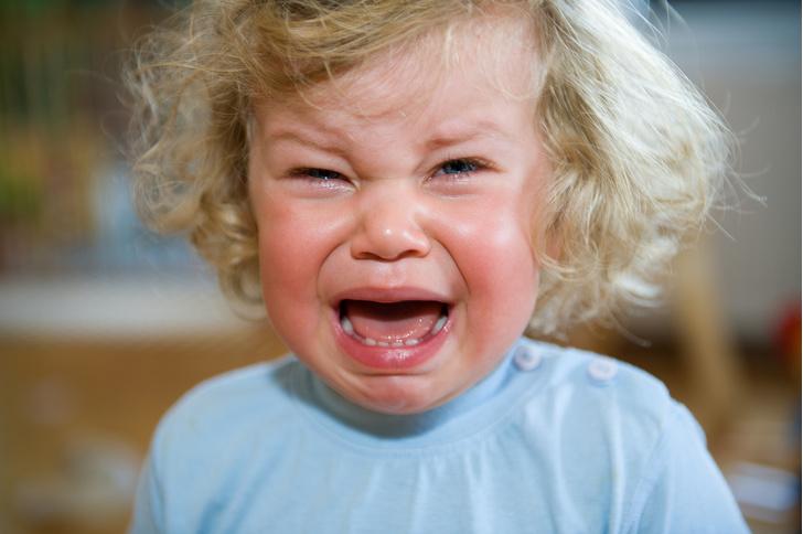 Фото №4 - Хорошо вести нельзя капризничать: как справляться с детскими истериками