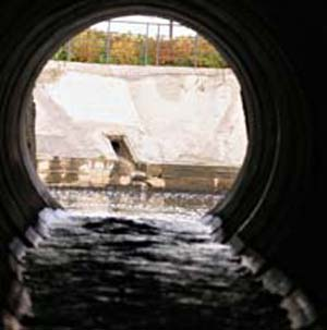 Фото №1 - Московская вода протухла