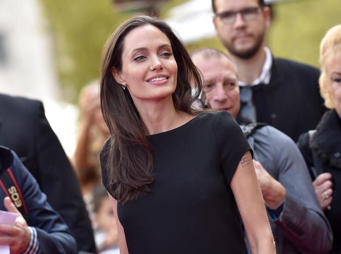 Фото №1 - Чем занимается Анджелина Джоли сегодня