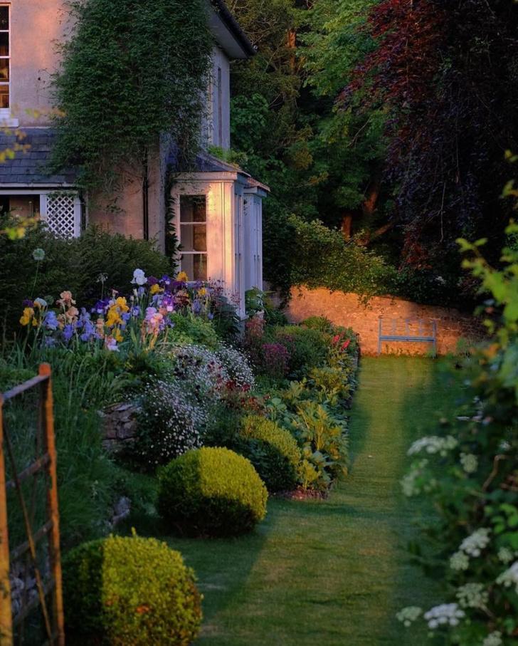 Фото №1 - Модный сад круглый год: советы экспертов