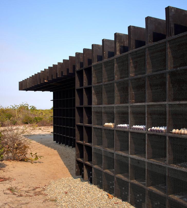 Фото №4 - Курятник по проекту Кенго Кумы в Мексике