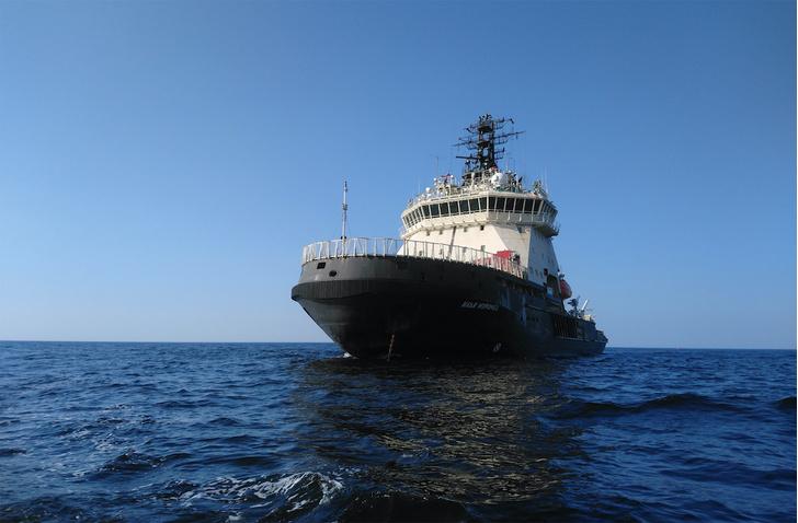 Фото №4 - Комплексная экспедиция РГО и Северного флота обследовала в Чукотском море затонувший пароход «Челюскин»