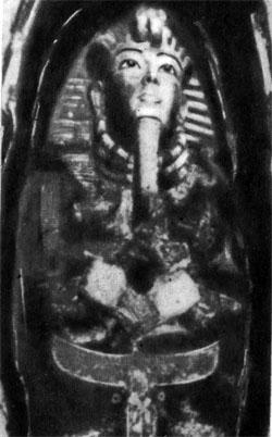 Фото №5 - Как нашли Тутанхамона