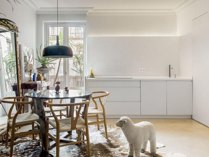 Фото №4 - Следуй за белым кроликом: эклектичная квартира в Сан-Себастьяне