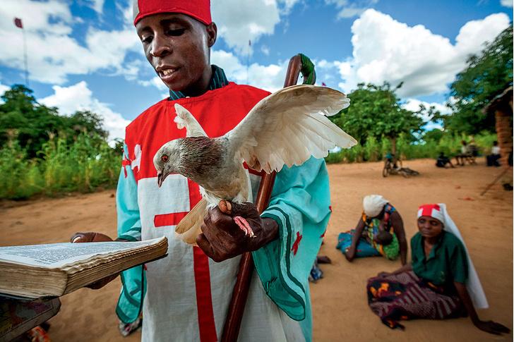 Фото №11 - Как изгоняют бесов в Мозамбике