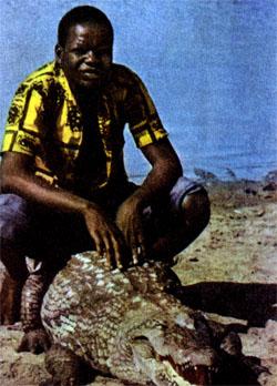 Фото №2 - Божество по имени крокодил
