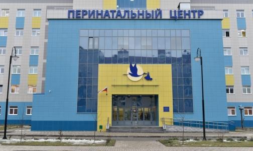 Фото №1 - В Брянске расследуют гибель 11 новорожденных в новом перинатальном центре