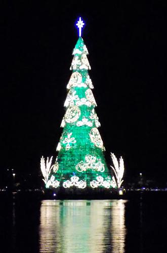 Фото №14 - Елки, палки, мандарины: как украшают новогодние деревья в разных странах мира