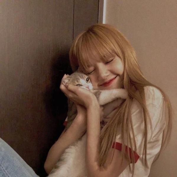 Фото №3 - BLACKPINK и котики: 8 фото Лисы, на которых хочется забрать обоих себе 😍