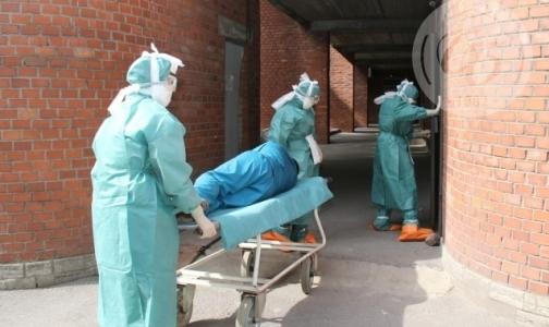 Фото №1 - В Петербурге готовятся к появлению пациентов с лихорадкой Эбола