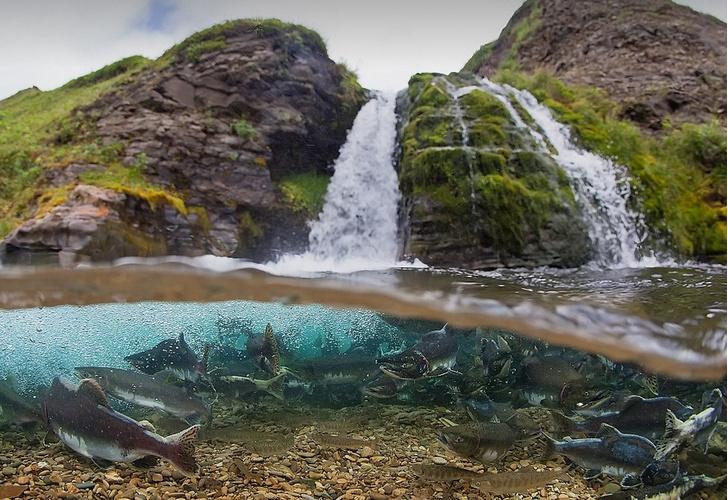 Фото №13 - Фотовыставка «Уникальные водные объекты России». Галерея