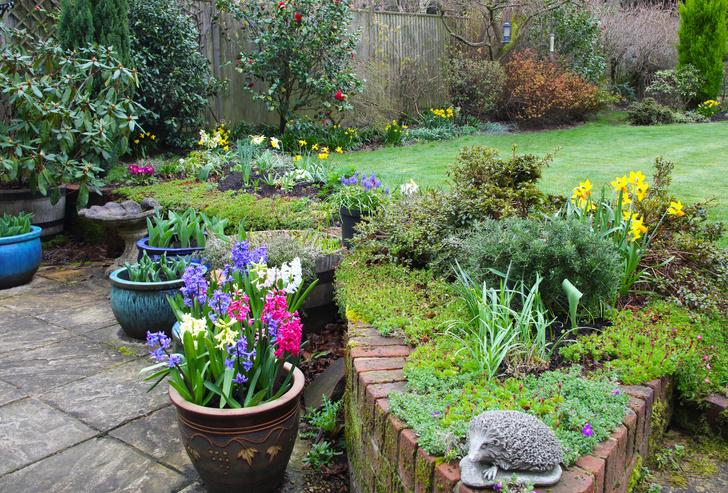 Фото №2 - 5 типичных ошибок при оформлении сада (и как их избежать)
