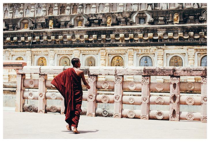 Фото №5 - Личный опыт: как уехать в Индию, чтобы помогать больным и бездомным