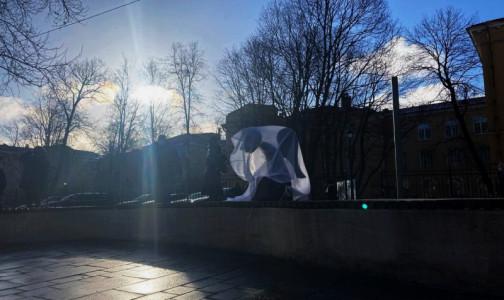 Фото №1 - Создательница Стены памяти медиков попросит президента отправить Александра Беглова в отставку