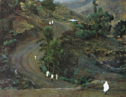 Фото №1 - Горячие ветры Эфиопии