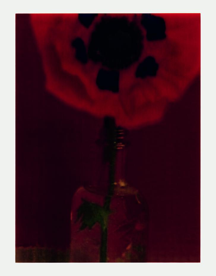 Фото №3 - Выставка фотографа Сары Мун в МАММ