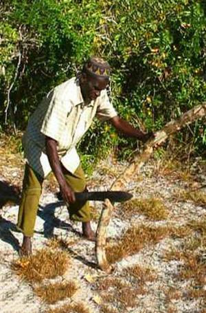 Фото №3 - Маска «муссиро», или Почему в Мозамбике женщины прекрасны