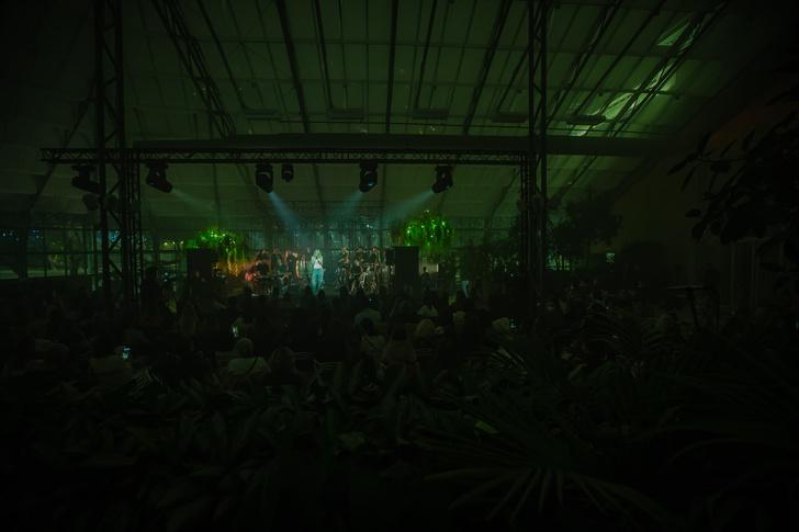 Фото №1 - Концерт «Рок на Струнных. Квартет Мелодион.» 30 мая в оранжерее ВДНХ