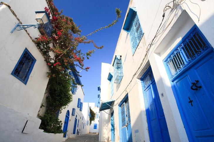 Фото №1 - Жемчужина Туниса: зачем ехать в бело-голубой город Сиди-бу-Саид