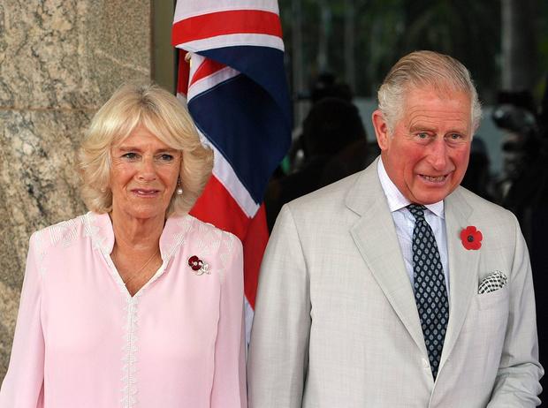Фото №2 - Принц Чарльз рассказал, чем он не будет заниматься, когда станет Королем