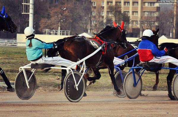 Фото №58 - Девушки на коне: самые романтичные наездницы Ульяновска