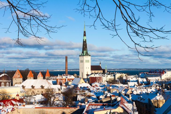 Фото №1 - Россияне стали чаще ездить в Эстонию и реже в Грецию