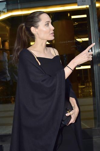 Фото №11 - 6 навязчивых идей Анджелины Джоли, разрушивших ее брак