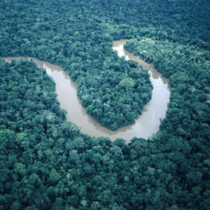 Фото №1 - Самая длинная река мира