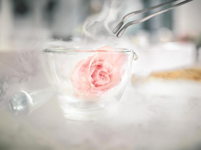 Фото №4 - Новое сокровище в Dior Prestige: универсальное средство для кожи, подобной лепестку розы