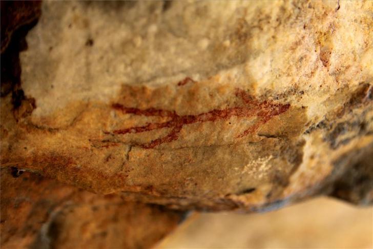 Фото №1 - В Испании найдены 5000-летние рисунки