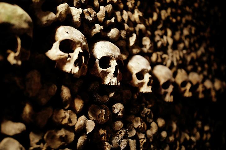 Фото №9 - Глубина свободы: катакомбы Парижа