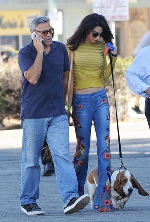 Фото №5 - Доброе сердце: Меган Маркл, Джордж Клуни и другие звезды, взявшие собаку из приюта