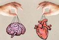 Решать головой или сердцем: 9 вопросов и ответов