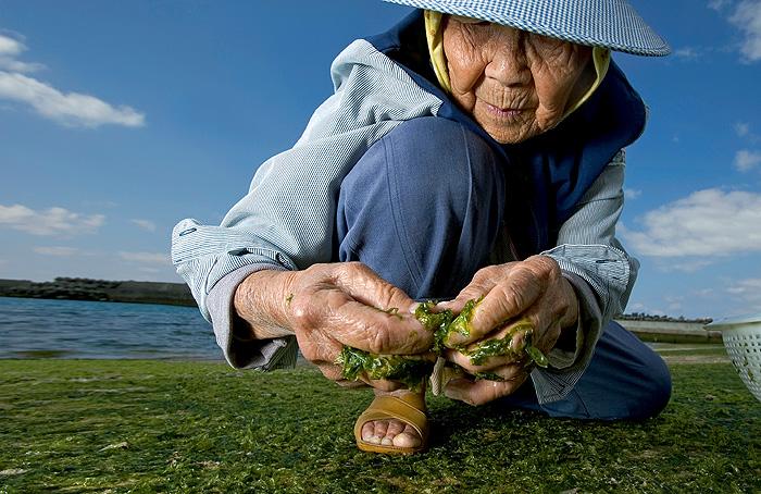 Фото №1 - Остров долгой жизни