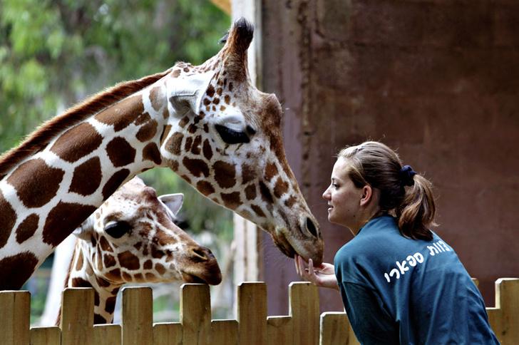 Фото №9 - Детки вне клетки: 12 лучших зоопарков мира