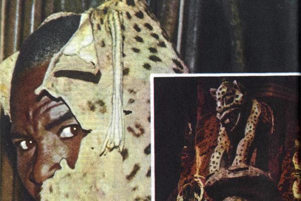 Фото №1 - Интервью с «леопардами»