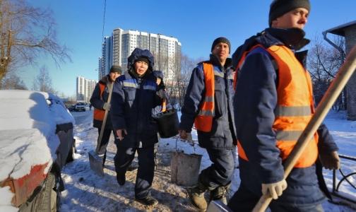 Фото №1 - Около одного процента мигрантов приезжают в Петербург с опасными болезнями