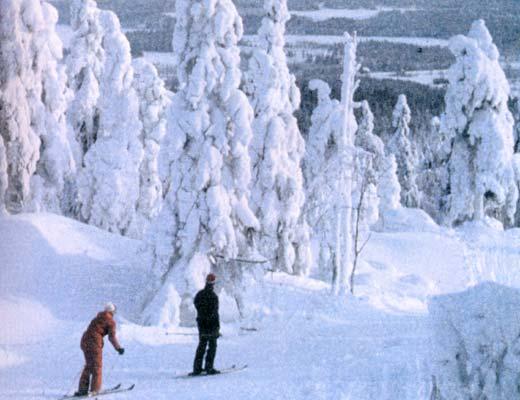 Фото №1 - Тема номера: Финляндия