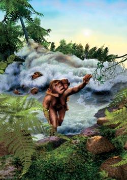 Фото №3 - Родословная «южных обезьян»