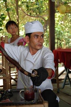Фото №6 - Индокитайский рецепт забвения прошлого