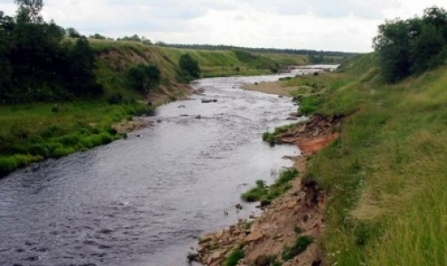 Фото №1 - В реку Тосна попали неизвестные химикаты