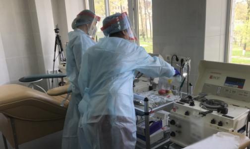 Фото №1 - В Первом меде будут заготавливать антиковидную плазму от вакцинированных доноров
