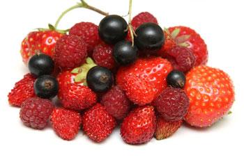 Фото №1 - Пробуем летние ягоды
