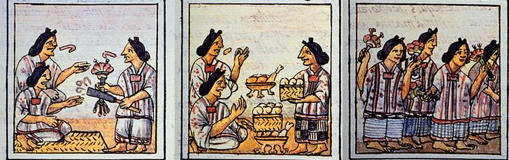 Фото №6 - Хлеб цивилизаций