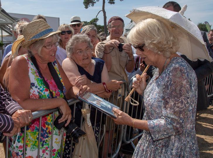 Фото №3 - Герцогиня Корнуольская будет замечательной королевой (консортом)