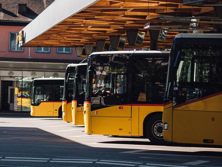 Водителей автобусов и такси предлагают осматривать через Интернет