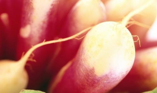 Фото №1 - 10 самых полезных «зимних» овощей и фруктов